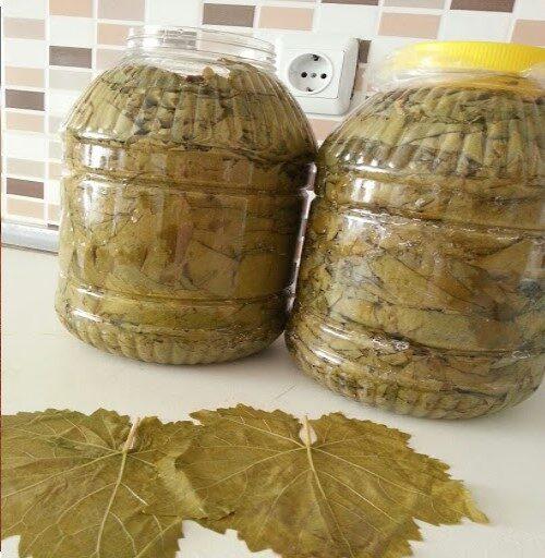 Üzüm Yaprağı 2.5 KG.