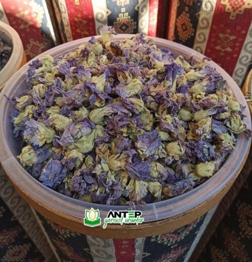 hatmi çiçeği çayı